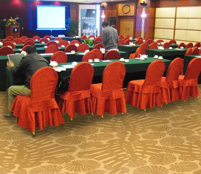 雅尔居酒店大堂地毯10