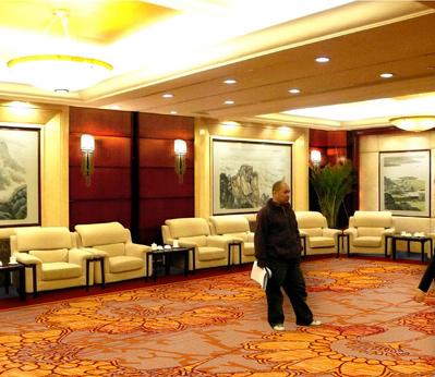 雅尔居酒店大堂地毯11