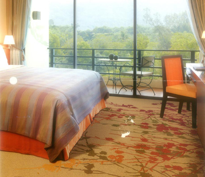 雅尔居酒店客房地毯59