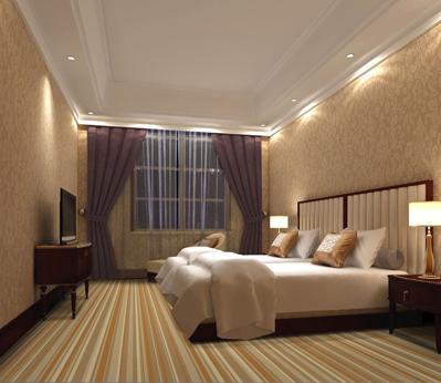 雅尔居酒店客房地毯61